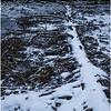 Adirondacks Indian Lake Raquette Brook Deadfall 1 December 2016