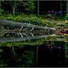 Adirondacks Forked Lake August 2015 Campsite 10