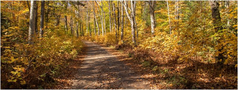 Adirondacks Whitney Wilderness Lake Lila Access Road 5 October 2012
