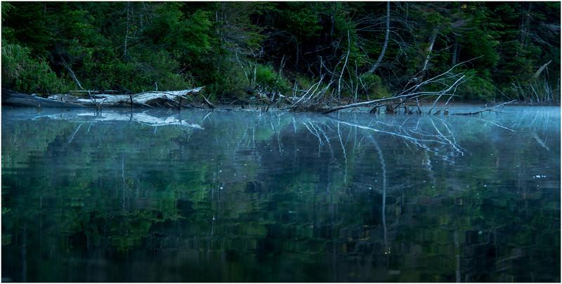 Adirondacks Moose River Shore 21 July 2016