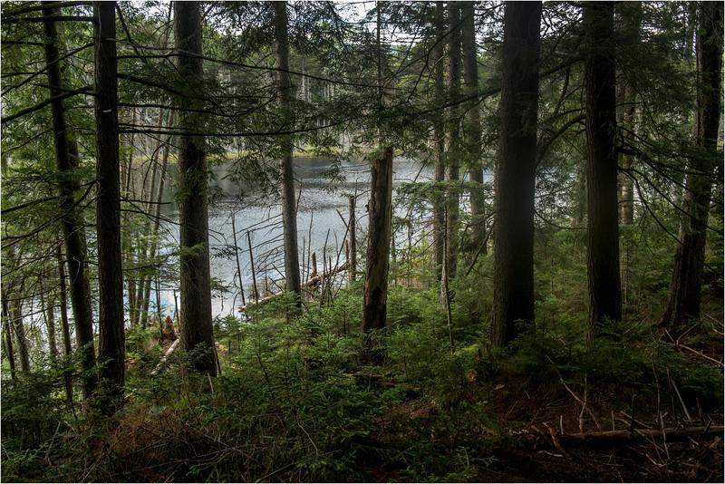Adirondacks July 2015 Barker Pond 1