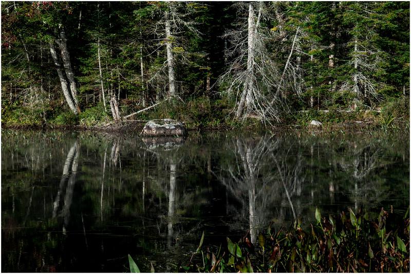 Adirondacks Lake Durant Morning Light 23 September 25 2016