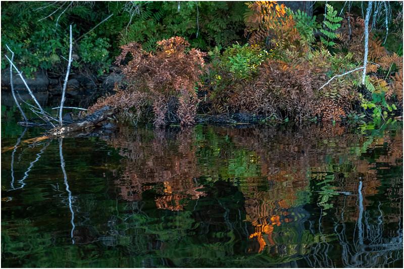 Adirondacks Nicks Lake 24 September 2019
