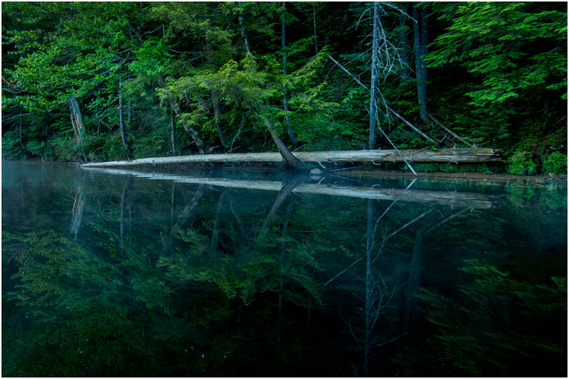 Adirondacks Moose River Shore 1 July 2016