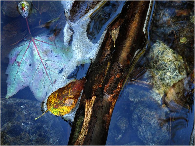 Adirondacks Algonquin Cascade Pool Blue Water Log September 2010