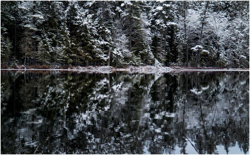 Adirondacks Follensby Clear Pond 5 December 2016
