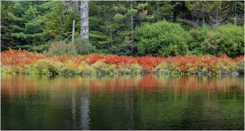 Adirondacks Lake Lila LEAG Beaver River 1 August 2019