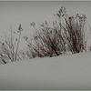 Adirondacks Arietta Stalks while Snowing 1 March 2018