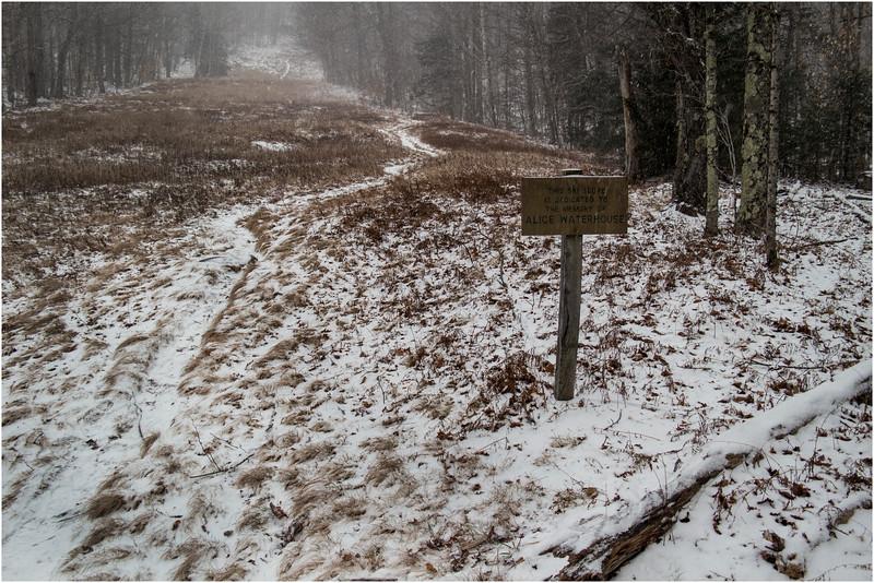 Adirondacks Heart Lake Path up the Slope 4 Waterhouse Sign November 2012