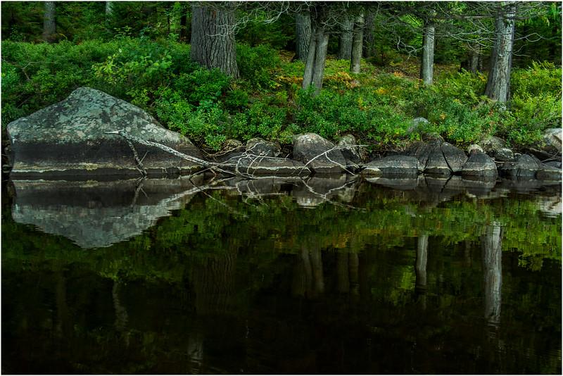 Adirondacks Forked Lake August 2015 Mid Morning Shoreline 2