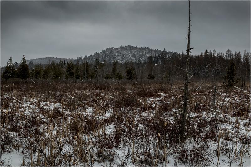 Adirondacks Raquette Lake 9 March 2018
