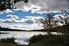Tooley Pond