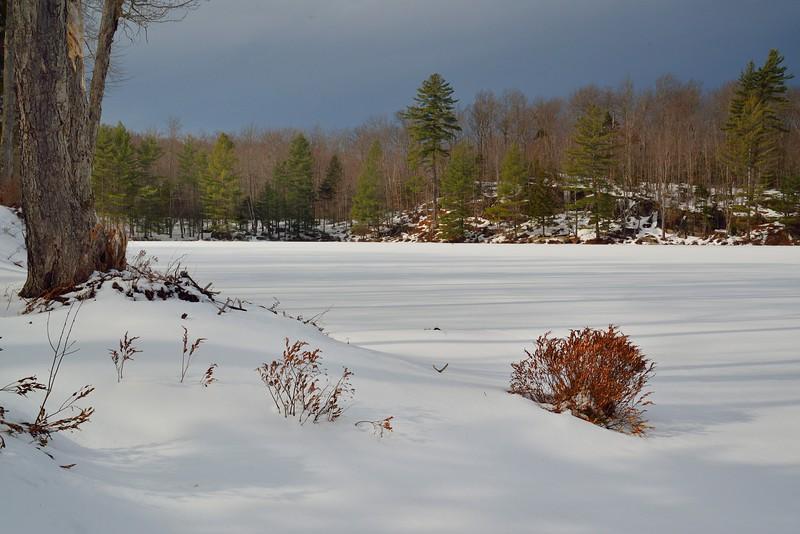 Middle Settlement Lake