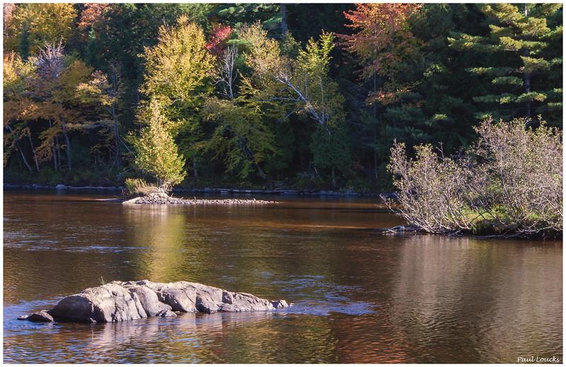 Shallows of the Saranac River