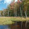 Marsh -- Long Pond Easement