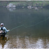 Fly-fishing using a wet fly.