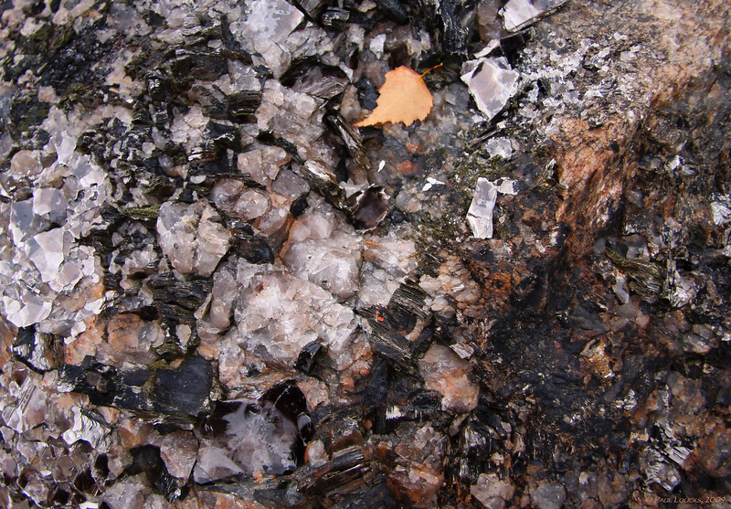 Conglomerate rock in the tailings at the northern end of the lake.