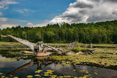 garnet lake     FF   sm  3011