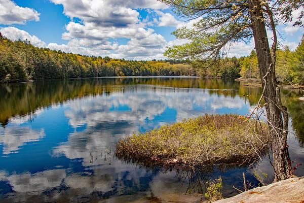 lake bonita   fff     sm     101