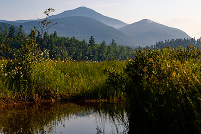 Whiteface Mt. from Connery Pond