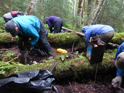 Wilderness Volunteers: 2017 Admiralty Island National Monument Service Trip