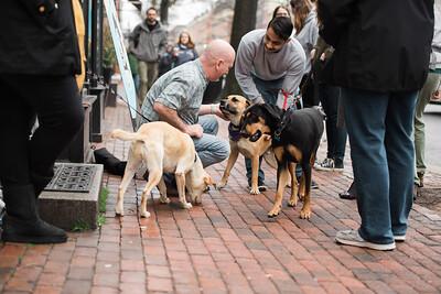 OPH Dog Park Feb 201830
