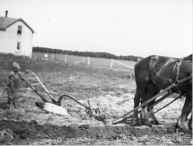[Young boy ploughing the Scotty Bryce farm's yard]
