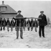 [3 men with ten skunk pelts, East of Arcola, 1930s]