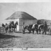 [Frame house with straw roof, near Palmer, c. 1910]