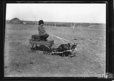 [Jean Craig in a wagon, pulled by turkeys]