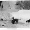 [Cats fishing for minnows, near Gravelbourg, 1940s]