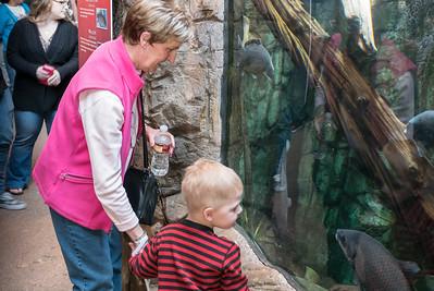 Denver Aquarium
