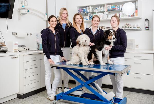 Tierarztpraxis-13