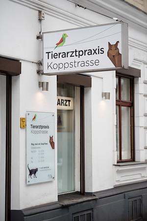 Tierarztpraxis-5