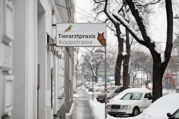 Tierarztpraxis-7