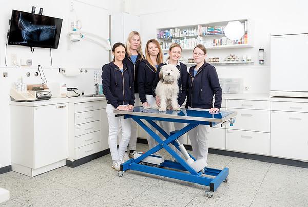 Tierarztpraxis-11