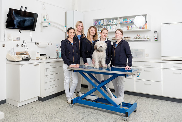 Tierarztpraxis-12