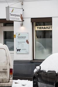 Tierarztpraxis-10