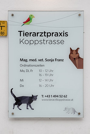 Tierarztpraxis-3