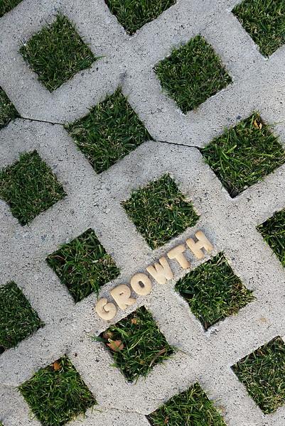 growth through adversity
