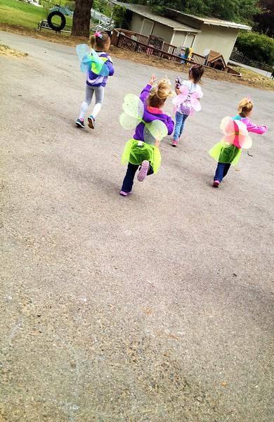 Groups of Pixie Dust Faires