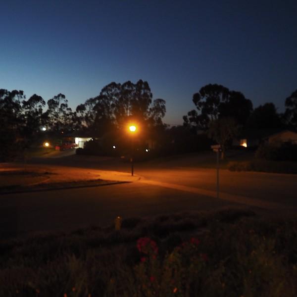 day thirteen: street lights