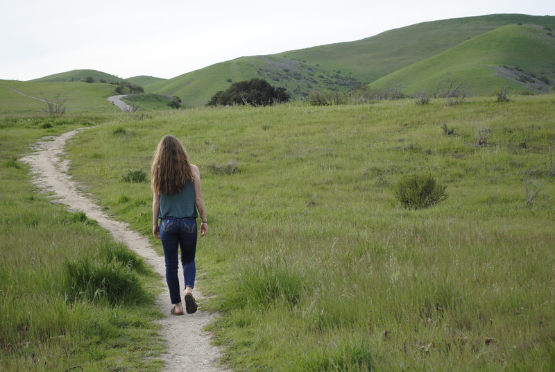 day 8: Sarah's path