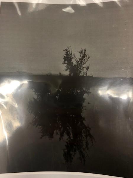 Darkroom cyanotype