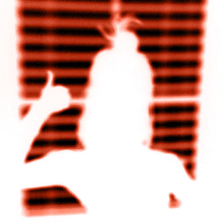 Cyanotype: digital negative