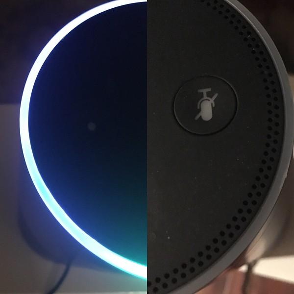 """""""Alexa"""""""