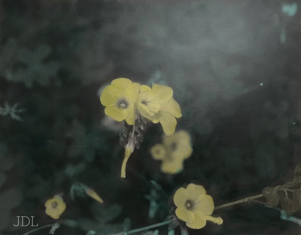Hint of yellow