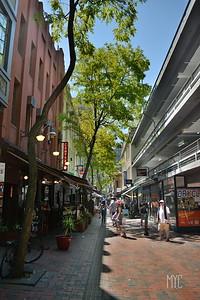 Street Down Under