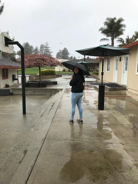 Rainy Day Lover
