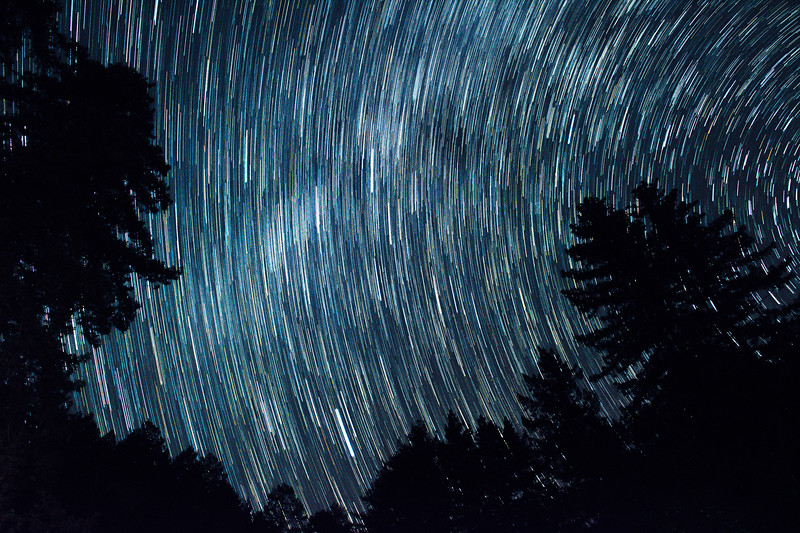 Stellar Movement